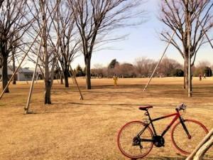 公園でランニング指導