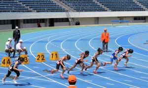 招待小学5年女子100m