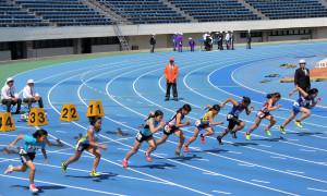招待小学6年女子100m