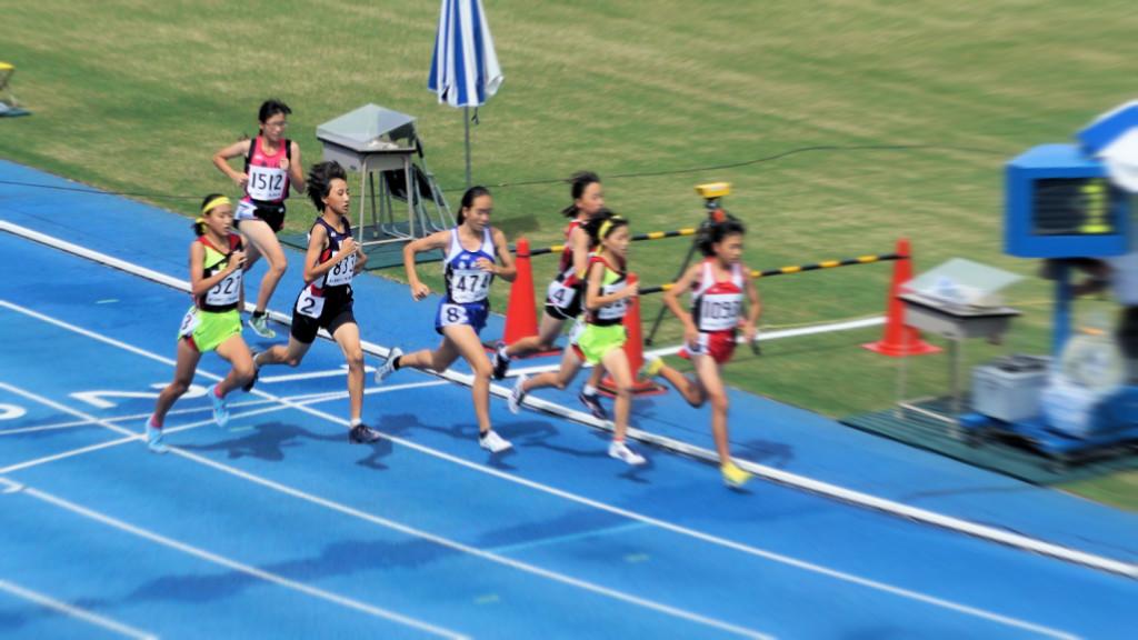 1年女子800m